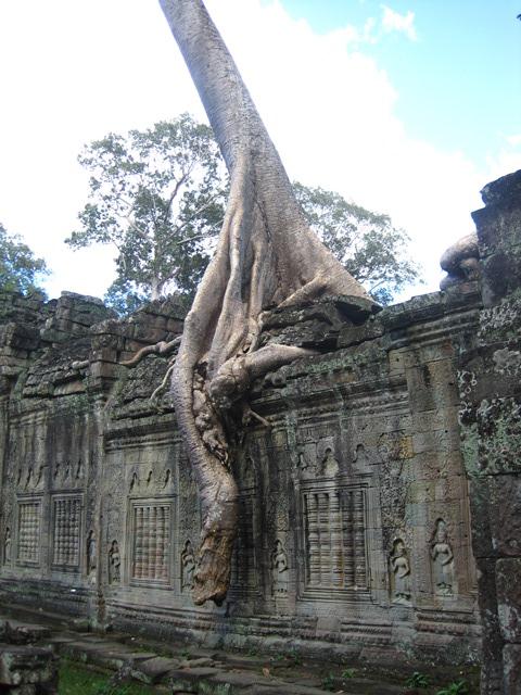 Angkor Preah Khan1 (10)