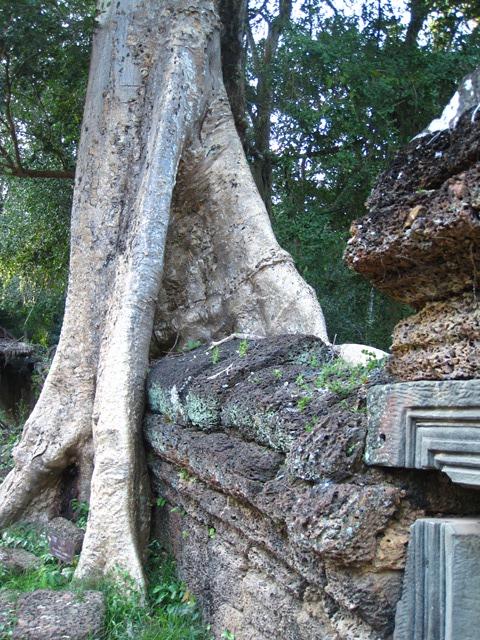 Angkor Preah Khan1 (19)