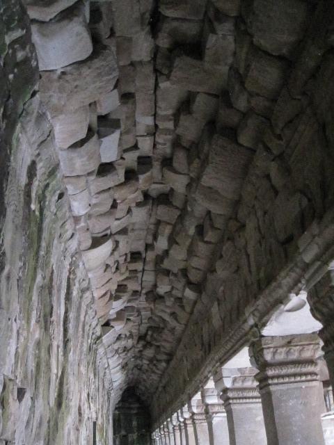 Angkor Ta Prohn Tomb Raider (13)