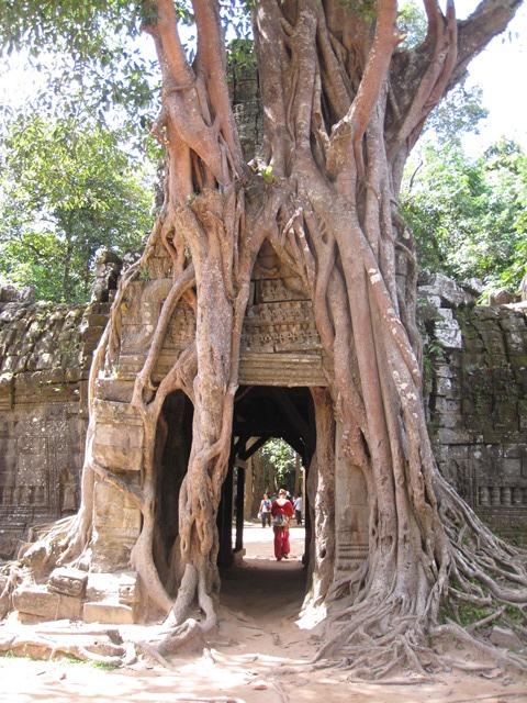 Angkor Ta Son (3)