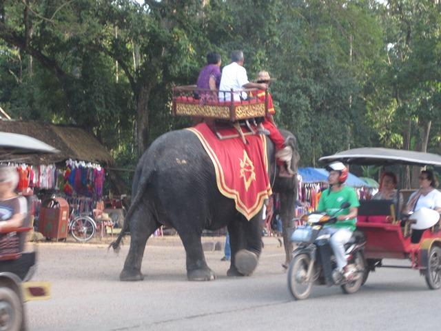 ANGKOR,Camboya ELEFANTE1