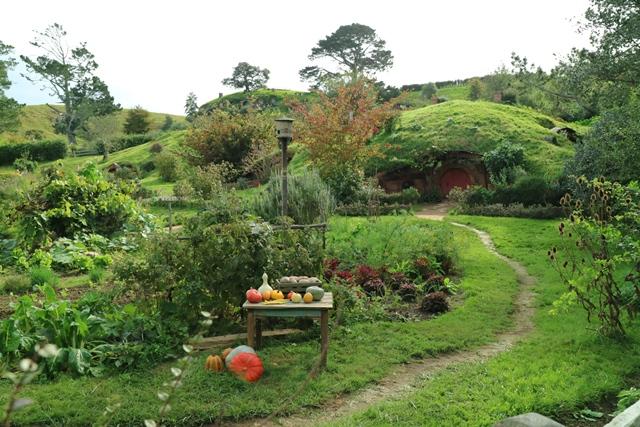 Hobbinton Nueva Zelanda (3)