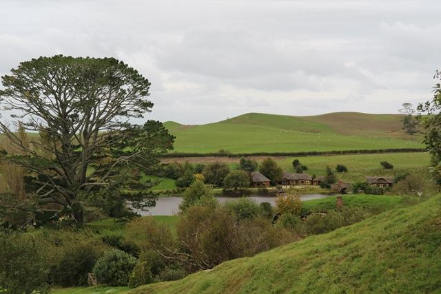 Hobbinton Nueva Zelanda (45)