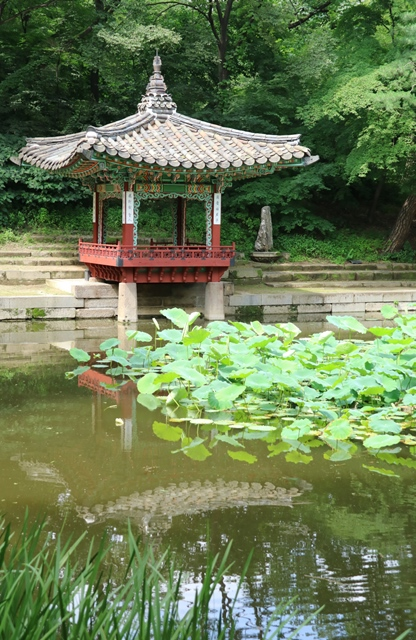 Palacio Changdeokgung Seul Corea del Sur (11)