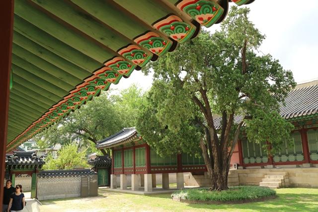 Palacio Changdeokgung Seul Corea del Sur (21)